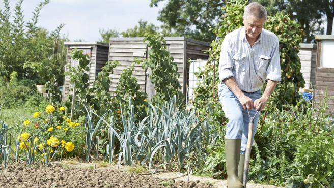 Two-for-one: Manage your garden, manage your osteoarthritis